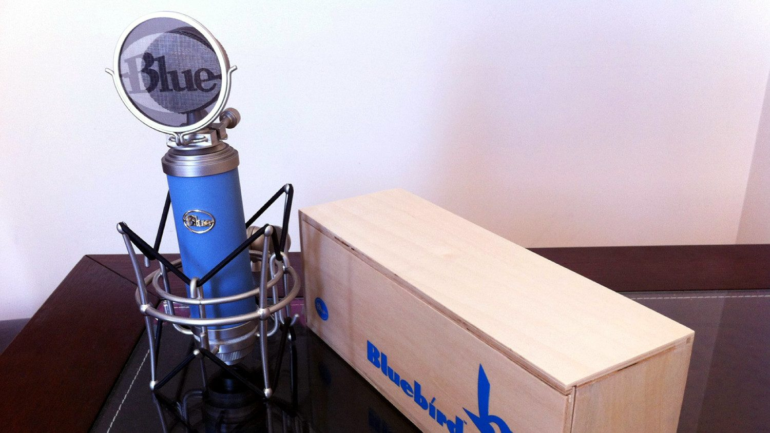 Blue Bluebird microphone review