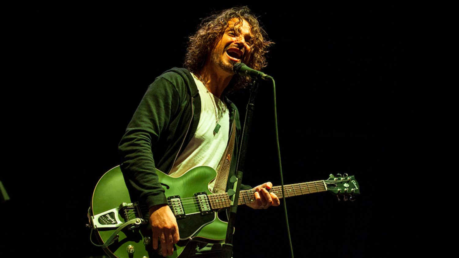 Chris Cornell Signature E-335