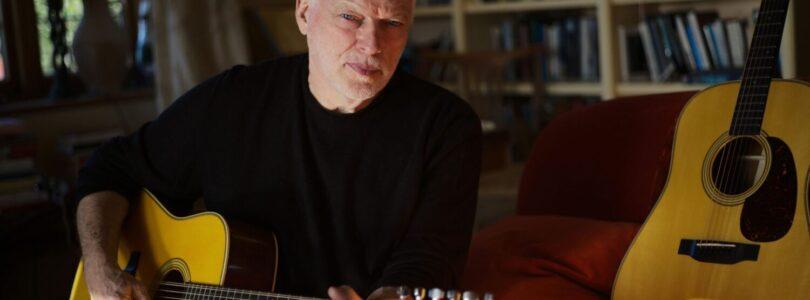 C.F. Martin D-35 David Gilmour Signature Guitars